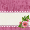 Card for congratulation with flowers and laces Stock Images