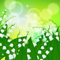 Card with field of lily of the valley flowers vector spring background on shining light green bokeh illustration for mother s day Royalty Free Stock Image