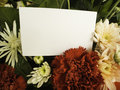 Card with flower blank white in shop Royalty Free Stock Photos