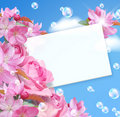 Card with flowers Royalty Free Stock Photo
