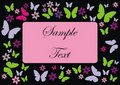 Card frame with butterflies and flowers Royalty Free Stock Photos