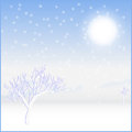 Card landscape cold sunny winter day Stock Image