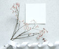 Card note with flower Royalty Free Stock Photo