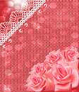 Of card with pink roses and lace Stock Image