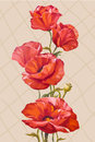 Card with poppies flowers oil painting Royalty Free Stock Images