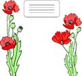 Card with poppy flowers hand drawn vector illustration Royalty Free Stock Images