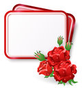 Card with red roses and dew drop greeting Royalty Free Stock Image