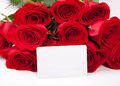 Card and roses Royalty Free Stock Image