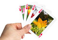 Card showing a fallen leaf in autumn hand holding playing Stock Photo