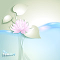 Card with stylized waterlily and pond Royalty Free Stock Photo