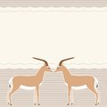 Card with two gazelles and place for text Royalty Free Stock Photography