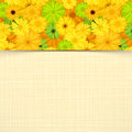 Card with yellow and green gerbera flowers. Vector eps-10. Royalty Free Stock Photo