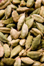 The cardamom seeds Stock Image