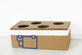 Cardboard box with holes