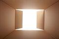 Cardboard box, inside view Royalty Free Stock Photo