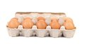 Cardboard egg box with ten brown eggs isolated clipping path Stock Image