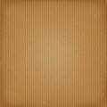 Cardboard texture the vector illustration Royalty Free Stock Images