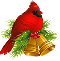 Cardinal Bird with Christmas bells Stock Images