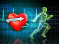 Cardio training exercise increases the heart s health digital illustration Stock Photography