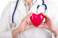 Cardiology care health protection and prevention female doctors s hands holding red toy heart in front of her chest doctor s hand Stock Image
