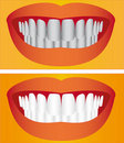 Care of teeth Royalty Free Stock Photo