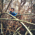 Carefree child sitting up in a tree Stock Photography