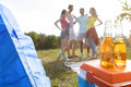 Carefree men and women relaxing in vacation Royalty Free Stock Photo