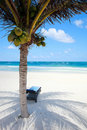 Caribbean beach Royalty Free Stock Photo