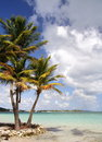 Caribbean Beach Royalty Free Stock Photos