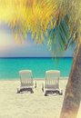 Caribbean beach chairs and palm empty tropical on sand at shoreline with trees in front in the vintage style Royalty Free Stock Image