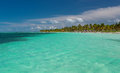 Caribbean beach in cuba cayo guillermo with palms Royalty Free Stock Image