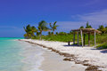 Caribbean beach in cuba cayo guillermo with palms Stock Image