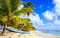 Caribbean beach in dominican republic beautiful on saona island Stock Photo