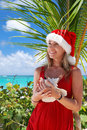 Caribbean christmas Royalty Free Stock Image
