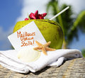 Caribbean paradise beach coconuts cocktail coconut starfish tropical refreshment and towel Stock Photos