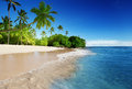 Caribbean sea and palms the Royalty Free Stock Photo