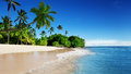 Caribbean sea and palms of beach Stock Photos