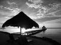 Caribbean sunrise in black and white pier palapa at at ambergirs caye belize Stock Photos