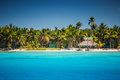 Caribbean wild beach in Punta Cana, Dominican Republic Royalty Free Stock Photo
