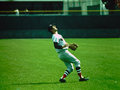 Carl Yastrzemski Boston Red Sox Stock Image