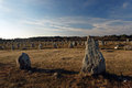 Carnac stones in britttany Royalty Free Stock Photos