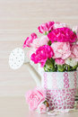 Carnation in mosaic flower pot on white background Royalty Free Stock Image