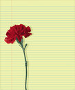 Carnation on paper one lies for mail Royalty Free Stock Image