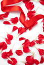 Carnation petals with red ribbon Stock Photography