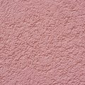 Carnation Pink Colored Wall