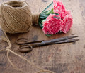 Carnations with old antique scissors bouquet of pink carnation flowers rusty and ball of brown twine Stock Photos
