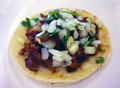 Carne Asada Taco Royalty Free Stock Photo