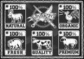Carnicero shop labels del vintage en una pizarra Imagenes de archivo