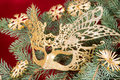 Carnival mask christmas tree snowflakes ornamental shrubs branches new year Stock Photos