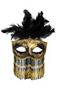 Carnival mask masquerade christmas black gold white background silver new year Stock Image